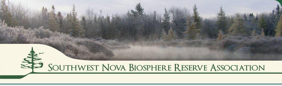 Southwest Nova Biosphere Reserve: Forests