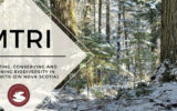 MTRI winter themed cover
